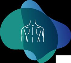 Illustration pour orthèses de dos